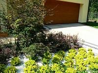 Barwna kompozycja w części frontowej ogrodu